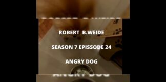 Robert B.Weide Season 7